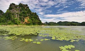 Ở Hà Nội cũng có đảo Hoa Quả Sơn nhé!