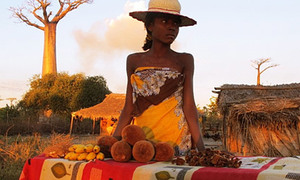 Madagascar có lung linh như bạn tưởng?
