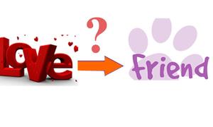 Làm thế nào để sau tình yêu, tình bạn vẫn còn?