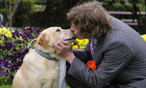 Mùi mẫn chuyện tình của chú rể người và 'cô dâu' chó