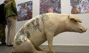 Hình xăm tuyệt diệu trên lưng... lợn