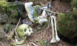 Aokigahara - Nơi hoàn hảo để tự sát