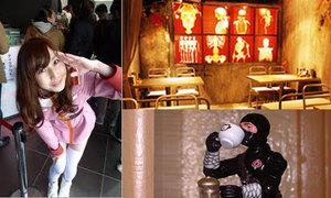 Đi tìm những quán cà phê độc của Nhật (phần cuối)