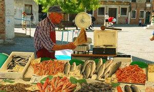 Ảnh street life về những ngày nắng vàng rượi ở Venice