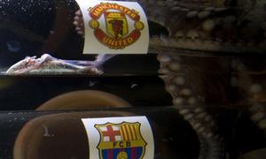 'Hậu duệ' bạch tuộc Paul đoán MU đánh bại Barca