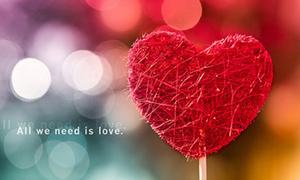 Một điều lí trí gửi trái tim