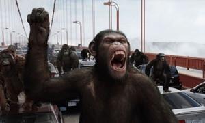 Binh đoàn khỉ 'đánh bại' xì trum, cao bồi và cả người ngoài hành tinh