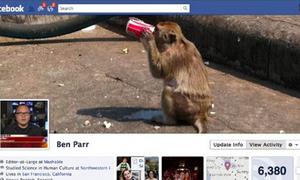 Facebook Timeline hoãn ra mắt vì rắc rối bản quyền