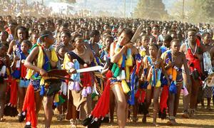 Người Zulu kiểm tra trai tân bằng cách... đi tiểu