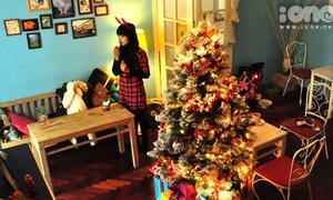 Giáng sinh ấm áp trong biệt thự cổ tích Unicorn's Home