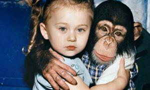 Thế giới của Amelia: Sự thân thiết với động vật