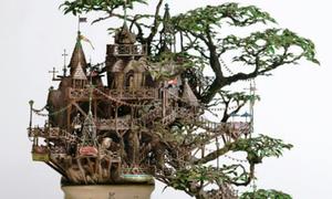 Nghệ thuật bonsai Nhật Bản 'đỉnh của đỉnh'