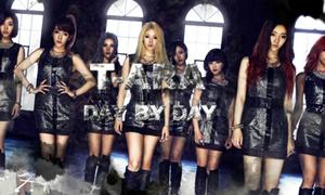 Concert của T-ara bị hoãn đến cuối năm