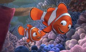 'Đi tìm Nemo' trở lại với phiên bản 3D sống động hơn