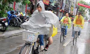 Giới trẻ Hà Nội đội mưa đạp xe trải nghiệm sống xanh