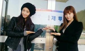 Sao Hàn nô nức đi bầu cử
