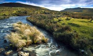 Chiêm ngưỡng phần tách biệt của thế giới - Tasmania