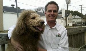 Gọi cảnh sát vì nhầm chó thành sư tử