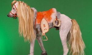 Bộ sưu tập các chú cún được cắt tỉa đầy nghệ thuật