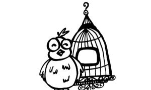 'Con chim và cái lồng' - Giả thuyết về tình yêu đáng ngẫm