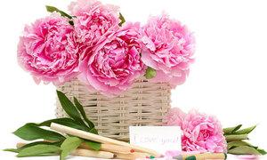 Tips:  7cách giữ cho hoa tươi lâu