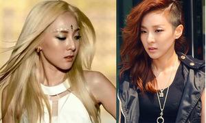 'Cuộc chiến' giữa tóc vàng và tóc nâu của sao Hàn