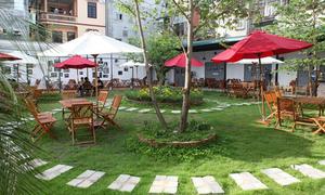 Thư giãn ngày hè trong quán cà phê vườn xanh mướt