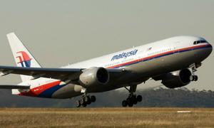 Máy bay Malaysia mất tích có thể đã hạ cánh xuống đất