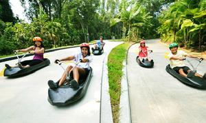 Trượt xe mạo hiểm - thú vui làm 'điên đảo' giới trẻ Sing