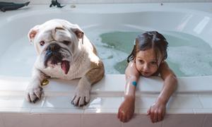 Bộ ảnh siêu đáng yêu của bé gái và cún cưng