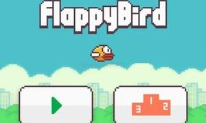 Nguyễn Hà Đông: Sẽ 'hồi sinh' Flappy Bird
