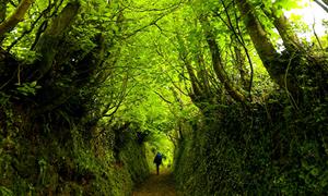 12 điểm khám phá đẹp mê ly ở Anh quốc