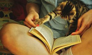 Nỗi đau của 'kẻ trộm sách'