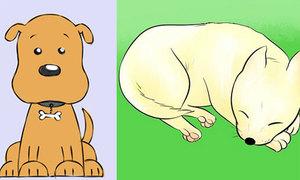 Trổ tài vẽ cún con siêu đáng iu nào