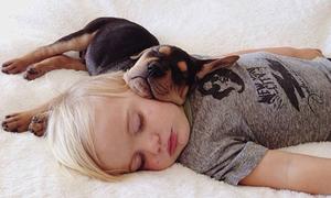 Cậu bé ôm cún cưng ngủ trưa siêu đáng yêu