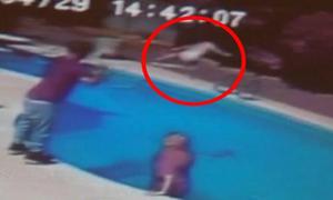 Bố ném con gái 2 tuổi vào bể bơi vì tội giết chó