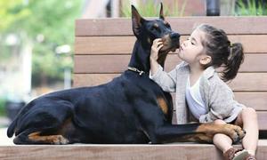 Bộ ảnh siêu kute của cô chủ 3 tuổi bên chàng vệ sĩ cún cưng