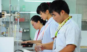 Sinh viên HUTECH và năng lực đáp ứng công việc