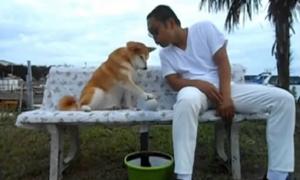 5 video hài cuối tuần: Cún cưng 'chảnh' nhất quả đất