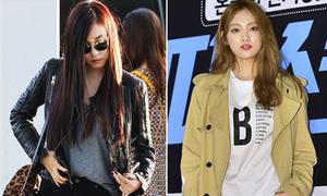 5 kiểu áo khoác khó thiếu trong tủ đồ đông của sao Hàn