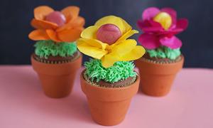 Chậu hoa rực rỡ làm từ bánh và kẹo