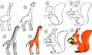 Cách vẽ đơn giản các loài động vật dễ thương
