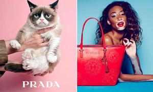 Những chiêu quảng cáo thời trang cực độc, hút khách ào ào