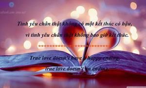 Lắng lòng với những status hay về tình yêu 11