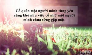 Những câu nói đau nhưng đúng về tình yêu (2)