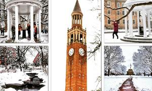 Ngất ngây trường đại học có khuôn viên đẹp nhất nước Mỹ