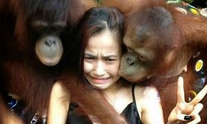 Những ảnh hài chỉ có ở châu Á (1)