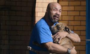 Ảnh chủ khóc ngất vì chó cưng qua đời gây xúc động mạnh