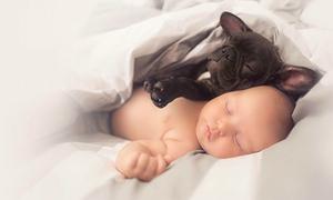 Đôi bạn cún cưng - nhóc tì sinh cùng ngày đáng yêu 'rụng tim'