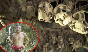Bộ lạc mài răng và treo hộp sọ động vật trang trí nhà